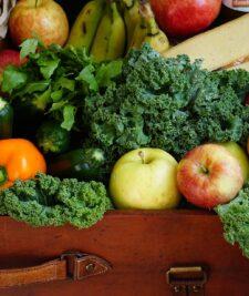 Reprezentantii OIPA legume-fructe la MADR