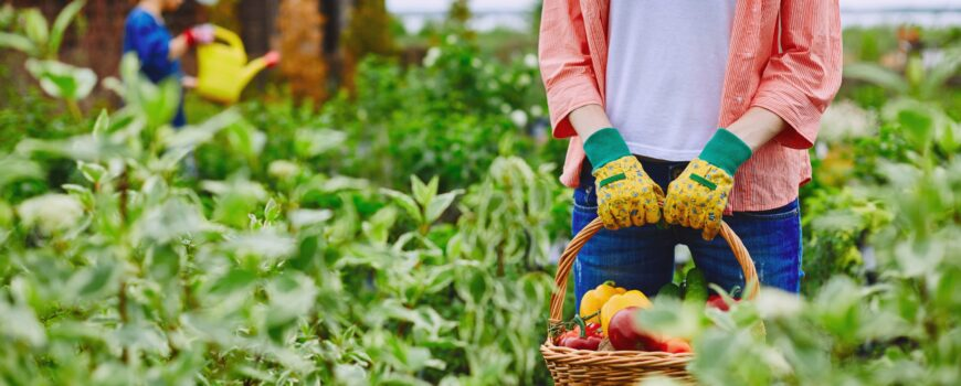 Locuri de munca in agricultura