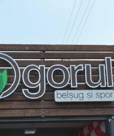 magazinul Ogorul